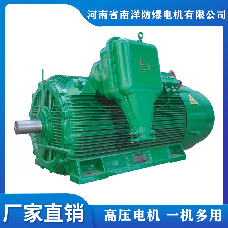 南洋供应YBX3防爆电机 三相异步电动机 高压电机厂家